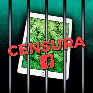 censura en redes sociales - cbd